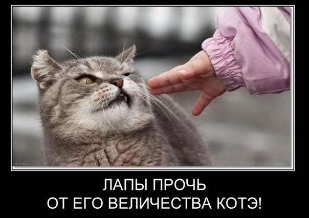 http://flytothesky.ru/wp-content/uploads/2012/06/11.jpg