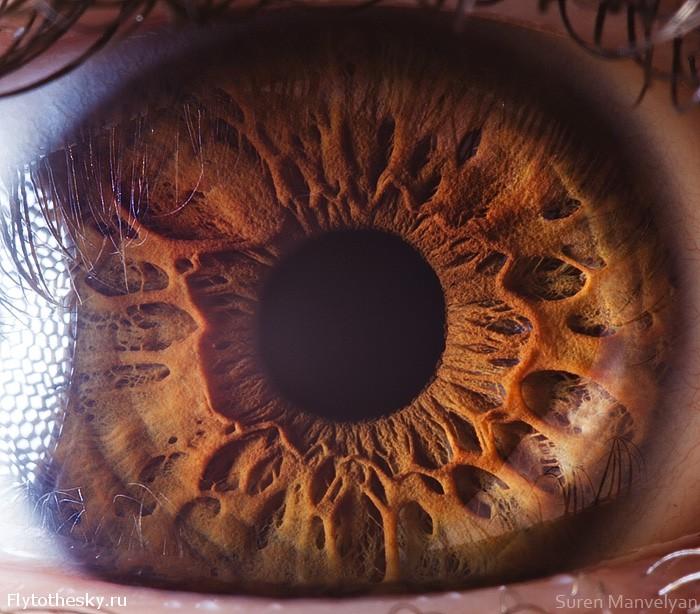 показала шоколадный глаз фото