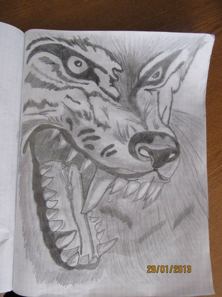 Черно белые рисунки карандашом 3