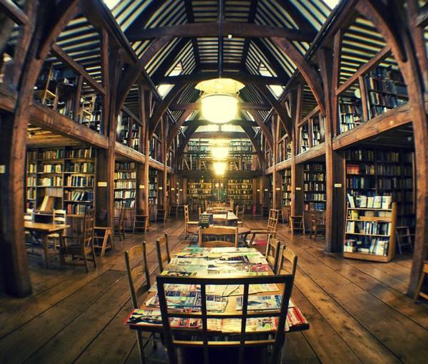 самые красивые библиотеки (13)