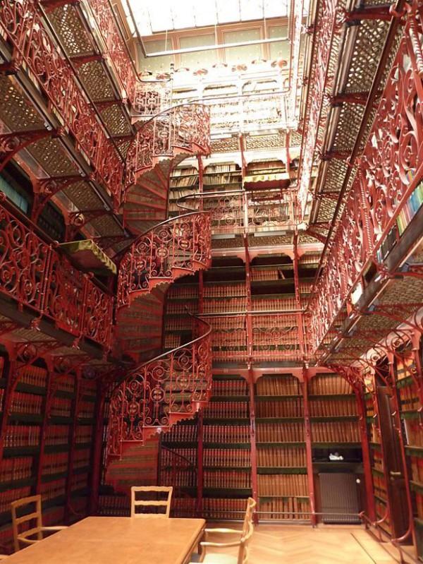 самые красивые библиотеки (12)