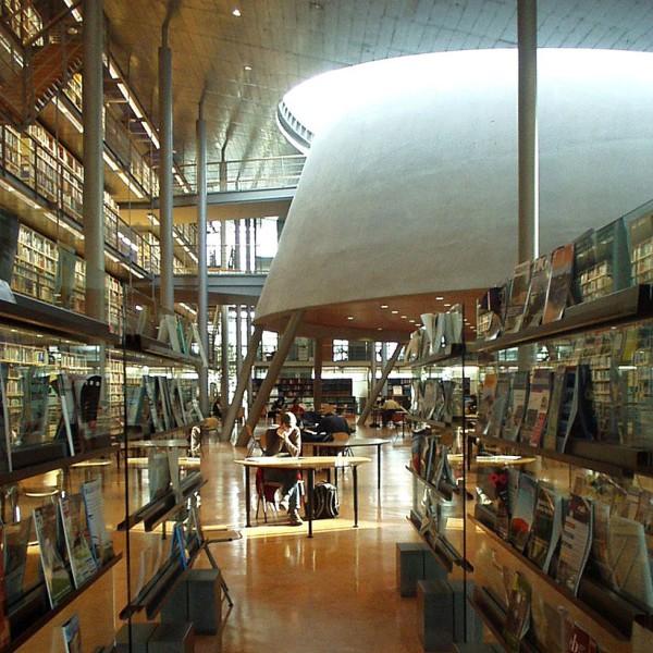 самые красивые библиотеки (10)