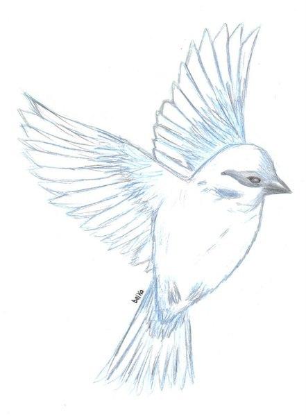 Рисунок золотого птица