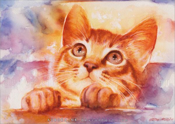 """Результат пошуку зображень за запитом """"Солнечные теплые коты от Aurora Wienhold - картины."""""""