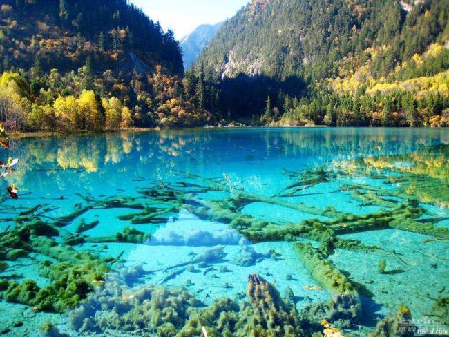 3 самых чистых водоема в мире