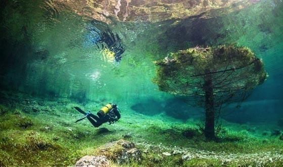 Зеленое озеро Австрия (5)