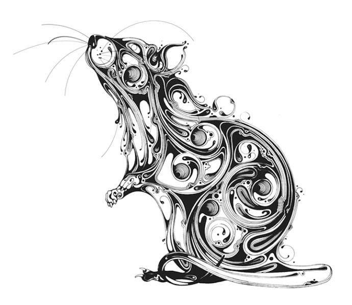 Иллюстрации животных (4)