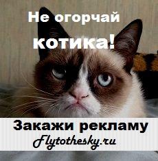 реклама на Flytothesky.ru