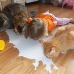 Дети, которые думают, что они животные