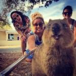 Селфи с квоккой — самый милый новый тренд в Австралии