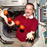 12 интересных фактов о жизни астронавтов в космосе