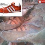 В Монголии нашли мумию в ботинках «Адидас»