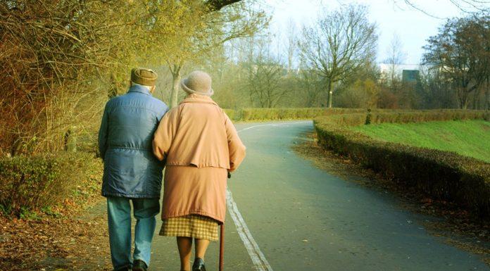 Как работает мозг в пожилом возрасте?