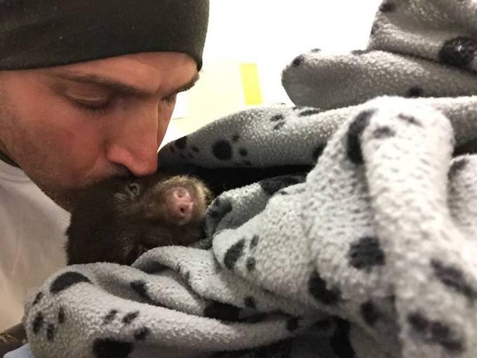 Этот парень спас умирающего крошку медвежонка