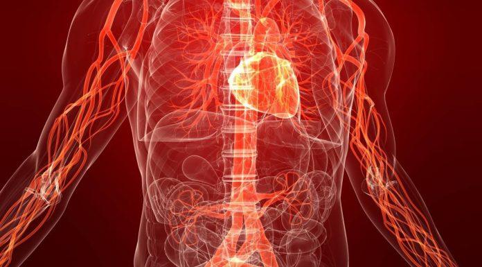 8 удивительных фактов о человеческом теле