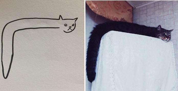 Не верьте, когда вам говорят, что вы не умеете рисовать кошек