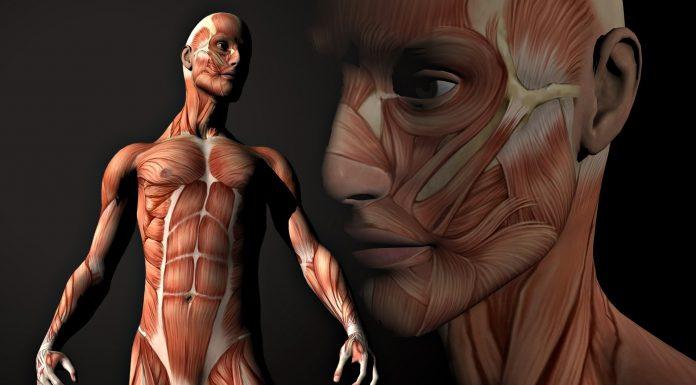 24 невероятных факта о человеческом теле. В это сложно поверить...