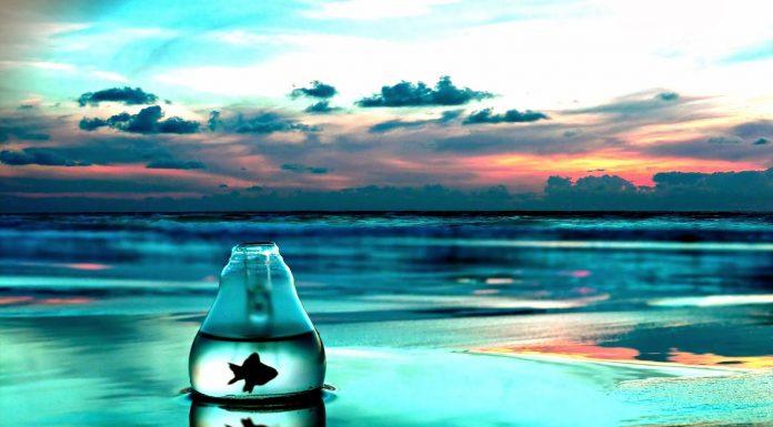 9 безболезненных и эффективных способов вырваться из зоны комфорта