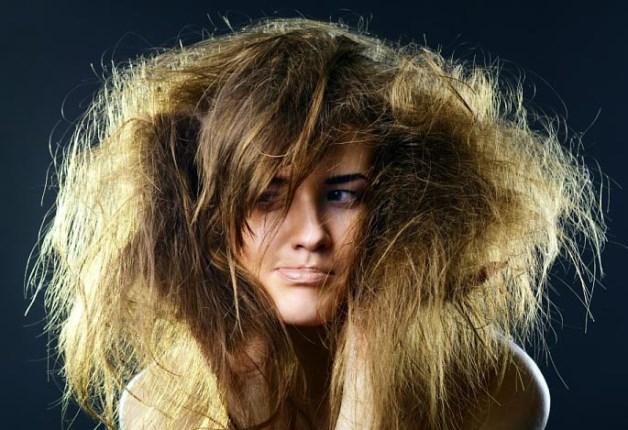 Заросла волосами дама фото 670-245