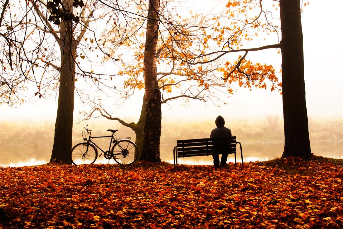 одинокие люди на фоне осени фото защитную деталь
