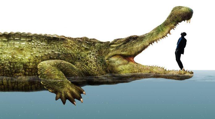 Вы только посмотрите, какие невероятные животные обитали на нашей планете 500 миллионов лет назад