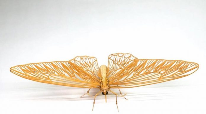 Японский мастер создает насекомых из бамбука