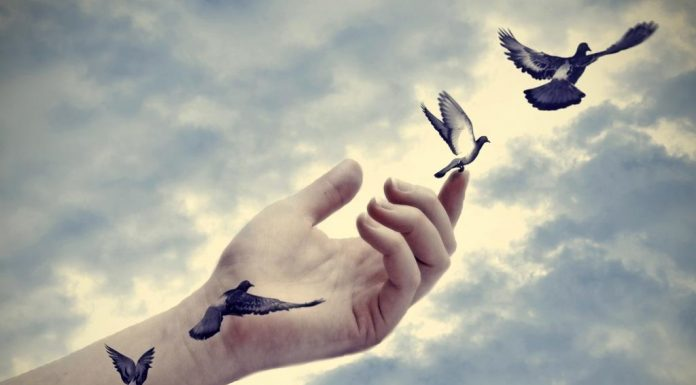 Знаки зодиака: насколько вам сложно отпустить свое прошлое (от большей степени к меньшей)