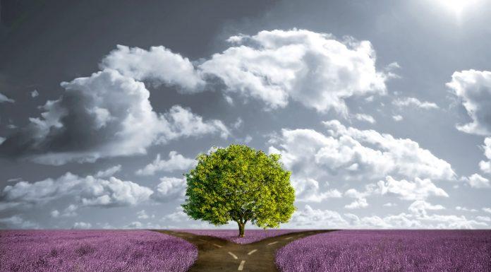 Знаки зодиака: какого жизненного пути вы достойны