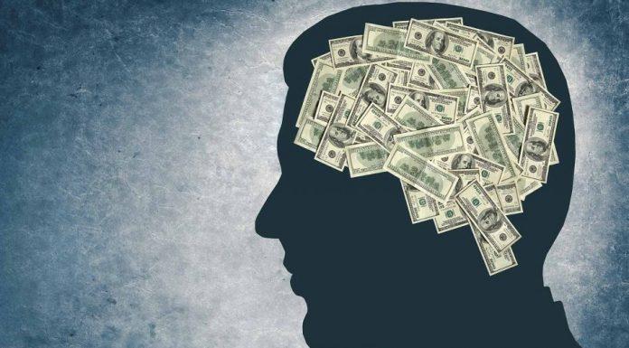 Тренировка собственного мозга на заработок денег
