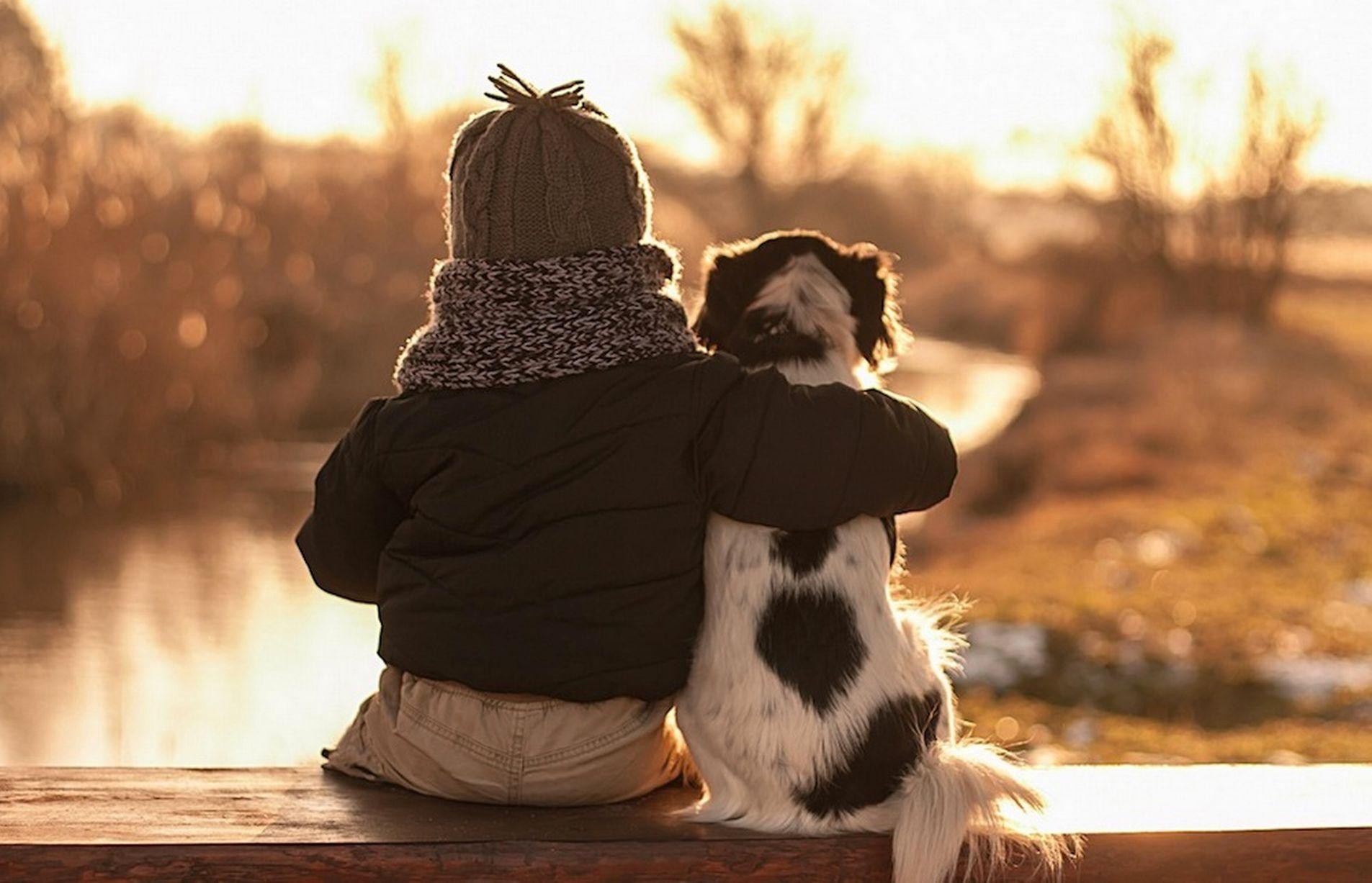 Большие картинки про дружбу