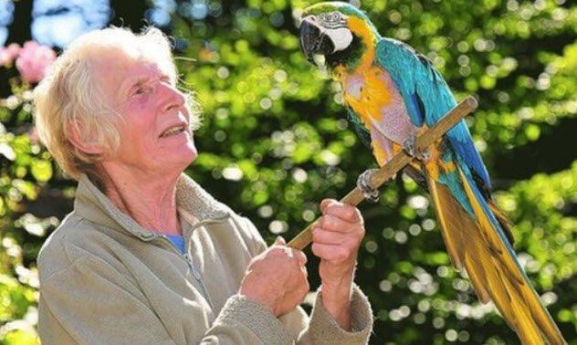 10 животных-долгожителей нашей планеты