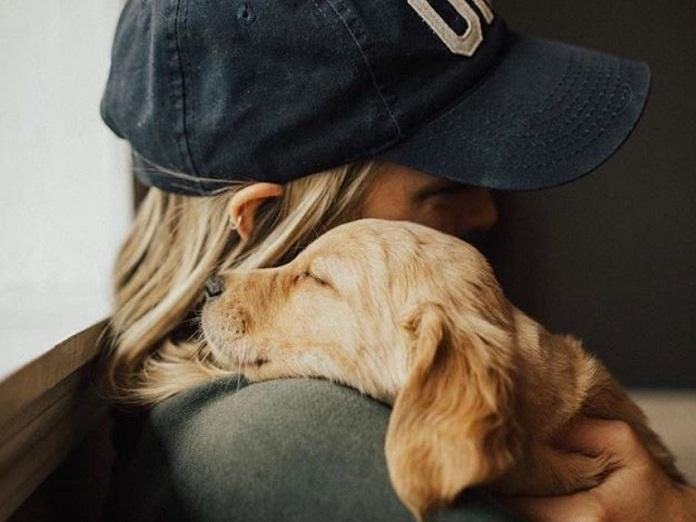 собака любит