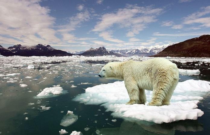 экологический кризис