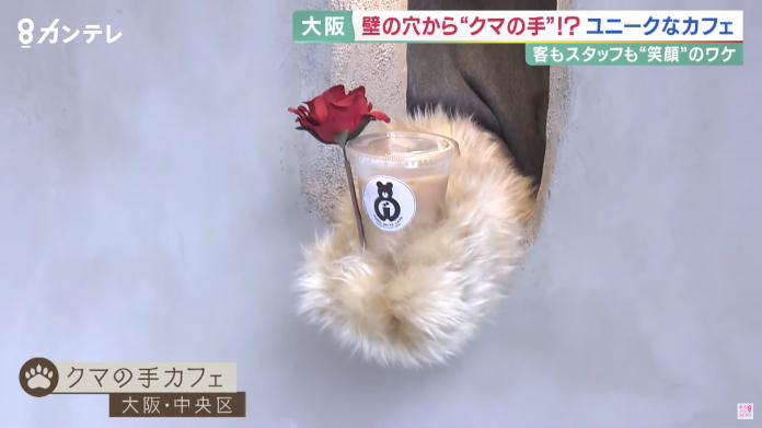 В Японии открыли кафе, где заказы выдает медвежья лапа